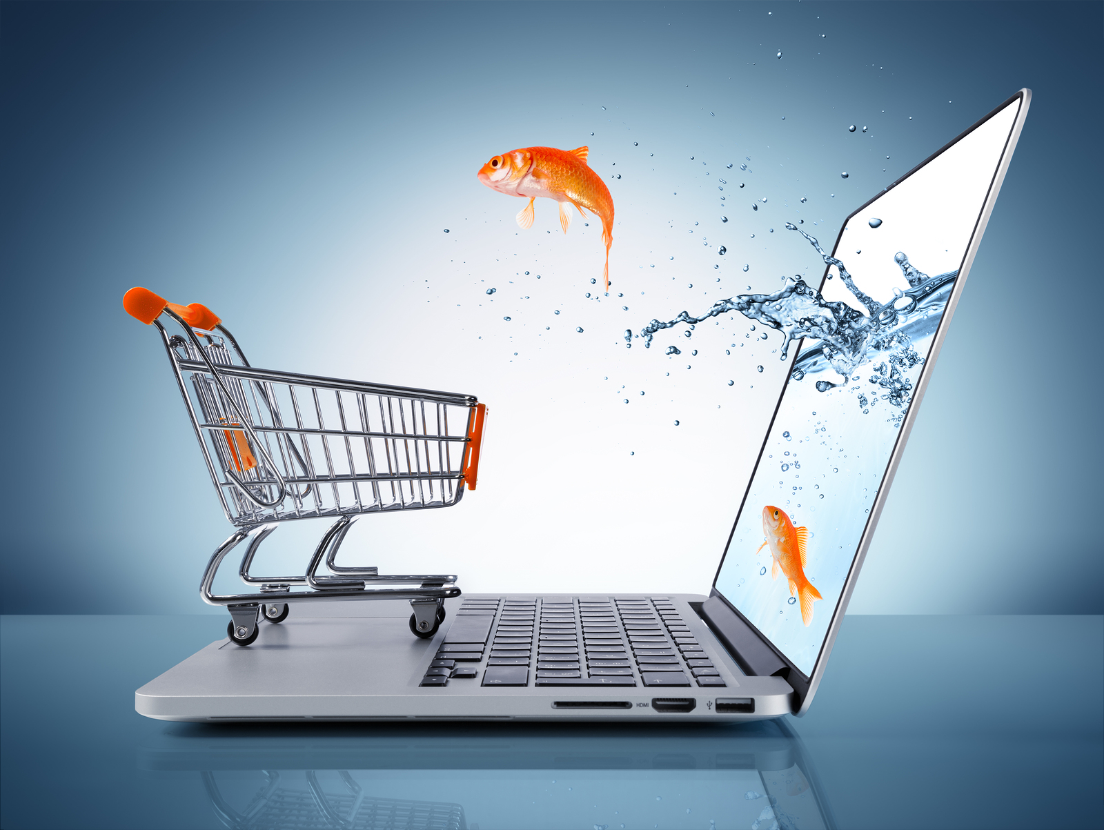 5 E-Commerce Basics for Your Business in 2015